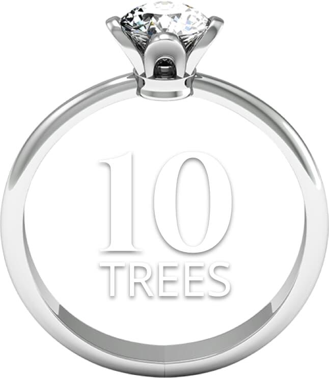 10tree Large 1